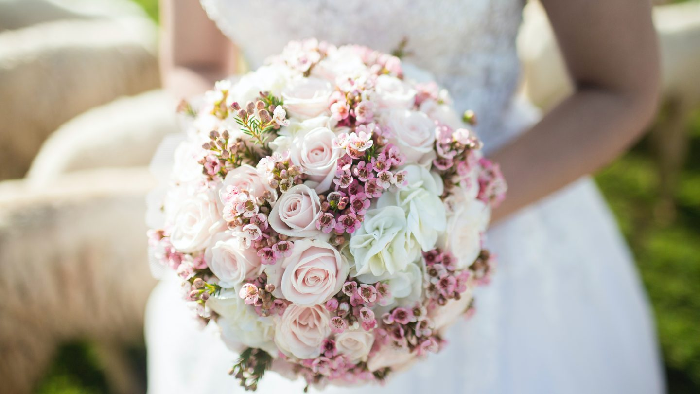 woman holding white and pink petal flower bouquet